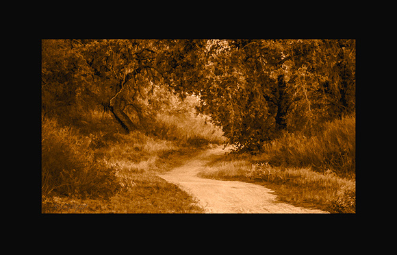 Pathway-Out-2-140810-264_5_6-2e-750w